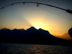 Balıkçılık için bir kaç neden