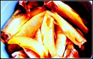 balık-nasıl-temizlenir-1-300x191 Balık Nasıl Temizlenir