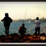antalyada-kiyidan-balik-avi