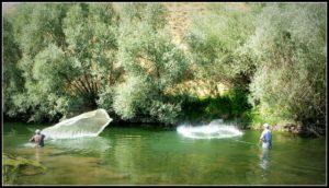 Serpme-Ağ-Balıkçılığı-4-300x170 Serpme Ağ Balıkçılığı