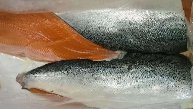 Balık Nasıl Saklanmalı