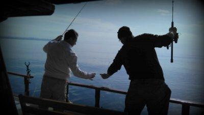 Teknemizdeki Davetsiz Misafir