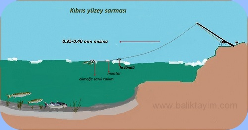 kıbrıs-sarması Kefal Avı Nasıl Yapılır?