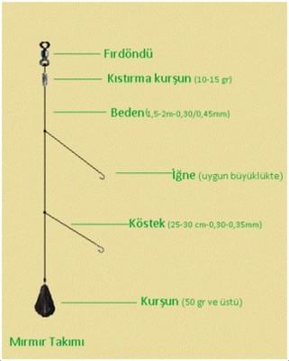 mirmir_avi-1 Mırmır Avı Nasıl Yapılır?