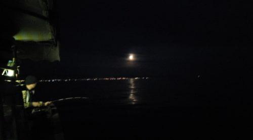 gece_avi-1 Gece Balık Avcılığı