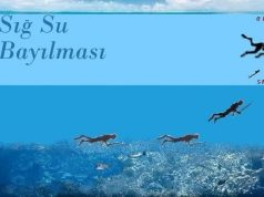 sig-su-bayilmasii