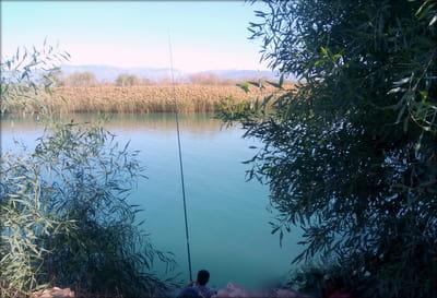 manavgat-irmak1 Manavgat Irmağı'nda Balık Avı