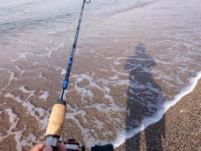 lrf_av Akdeniz'de Balık Nerede?